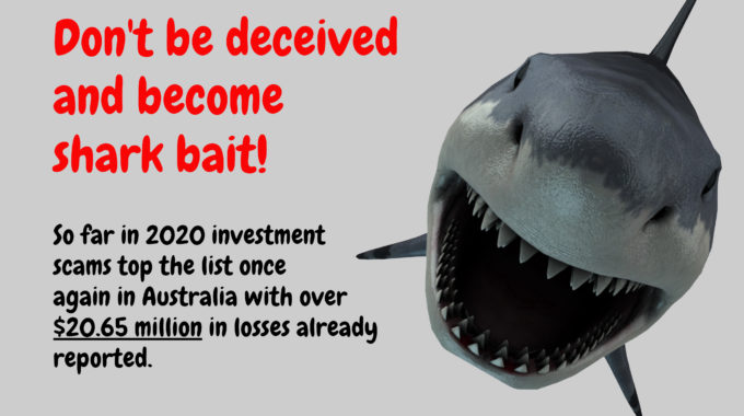 Don't Be Deceived And Become Shark Bait