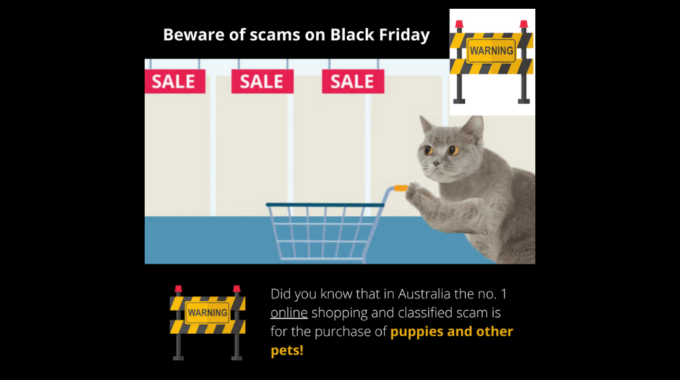 The Number 1 Online Shopping Scam In Australia